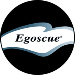 Egoscue Inc.